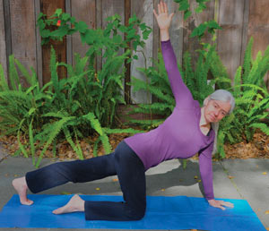 yoga rotation