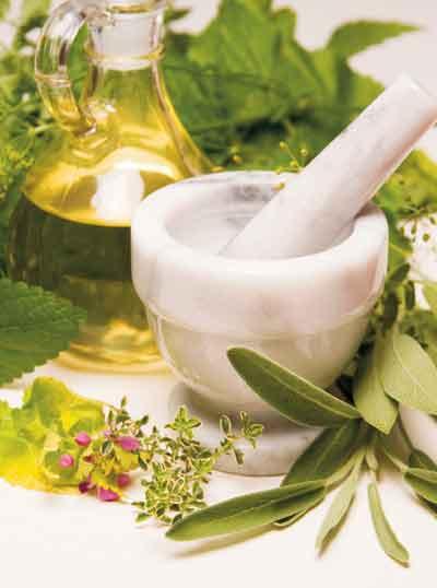R_5_Herbalist_B.jpg