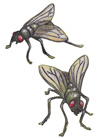 almanac_flies