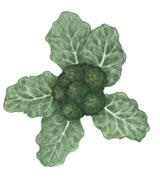 almanac_broccoli