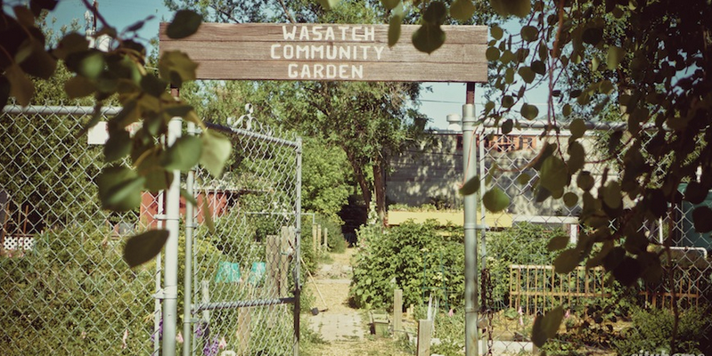 What\'s new at Wasatch Community Gardens | Catalyst Magazine
