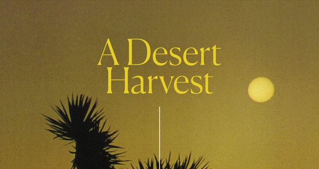 Desert Loving Author Gives A Reading At King S English Catalyst