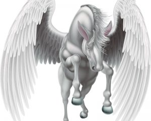 An illustration of a white pegasus mythological winged horse rearing on its hind legs or running, jumping or flying seen from the front