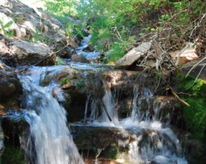 Emigration Creek