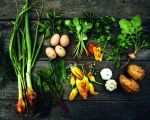 Freshly picked farm crops on old rustic table