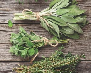 Fresh garden herbs on wooden table. Oregano, thyme, sage, rosemary. Top view with copy space