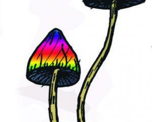 Psychedelics set. Hand drawn elements vector illustration.